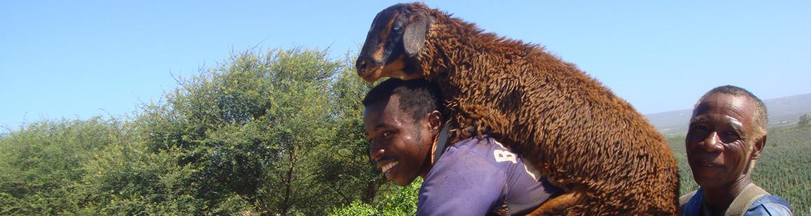 Ubersicht der Rundreisen - Madagascar Mosaik Reisen