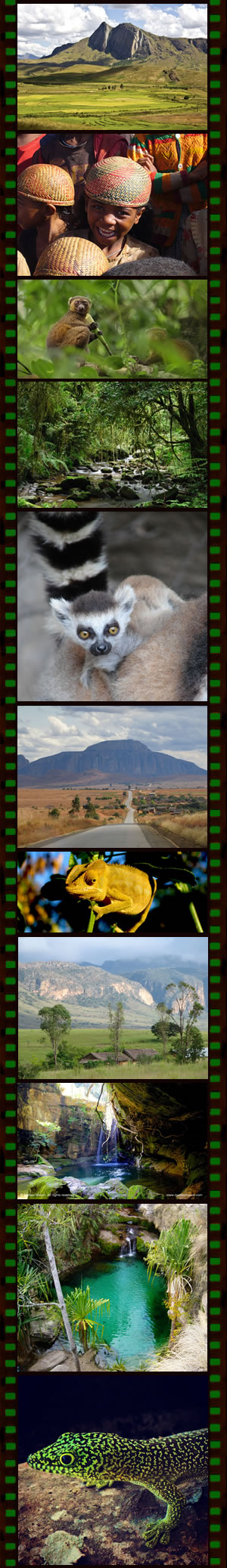 Wildlife and Culture Tour