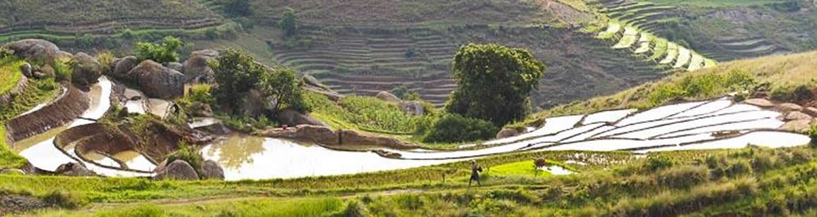 Wildleben & Kulturreisen 6N/7T - Madagascar Mosaik Reisen